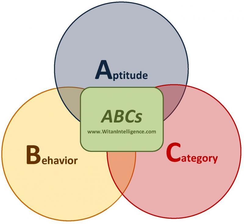 ABCs of Questionnaire Design WitanIntelligence.com