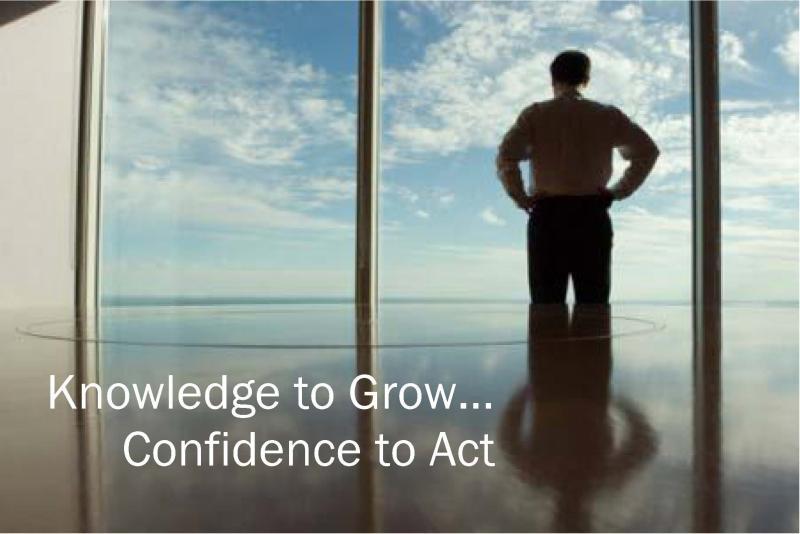 WitanIntelligenceConfidence