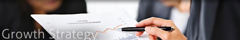 Growth Strategy WitanIntelligence.com